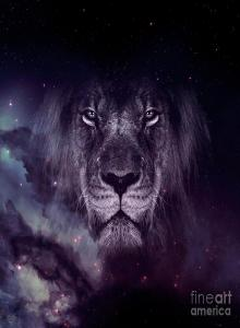 Galxy Cool Lion Wallpapers - Top Free Galxy Cool Lion Backgrounds