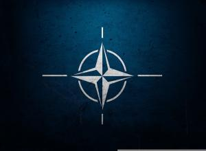 Nato Wallpapers - Top Free Nato Backgrounds