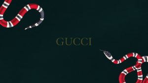 Gucci Snake Wallpapers – Top Free Gucci Snake Backgrounds