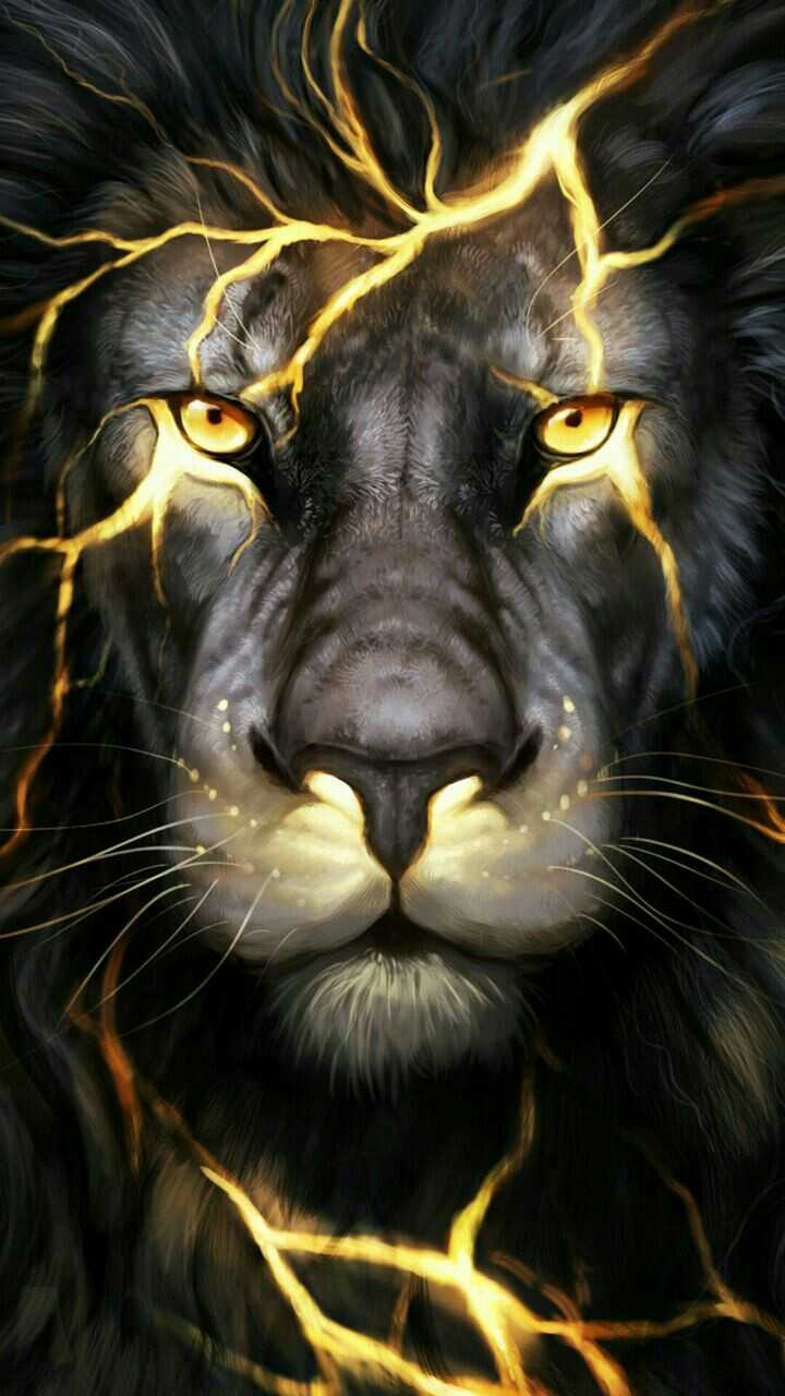720x1280 Wallpaper - Sharechat - Cool Pictures Of Lions (#587407 ...