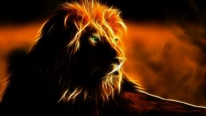 Cool Fire Lion Wallpapers – Top Free Cool Fire Lion Backgrounds