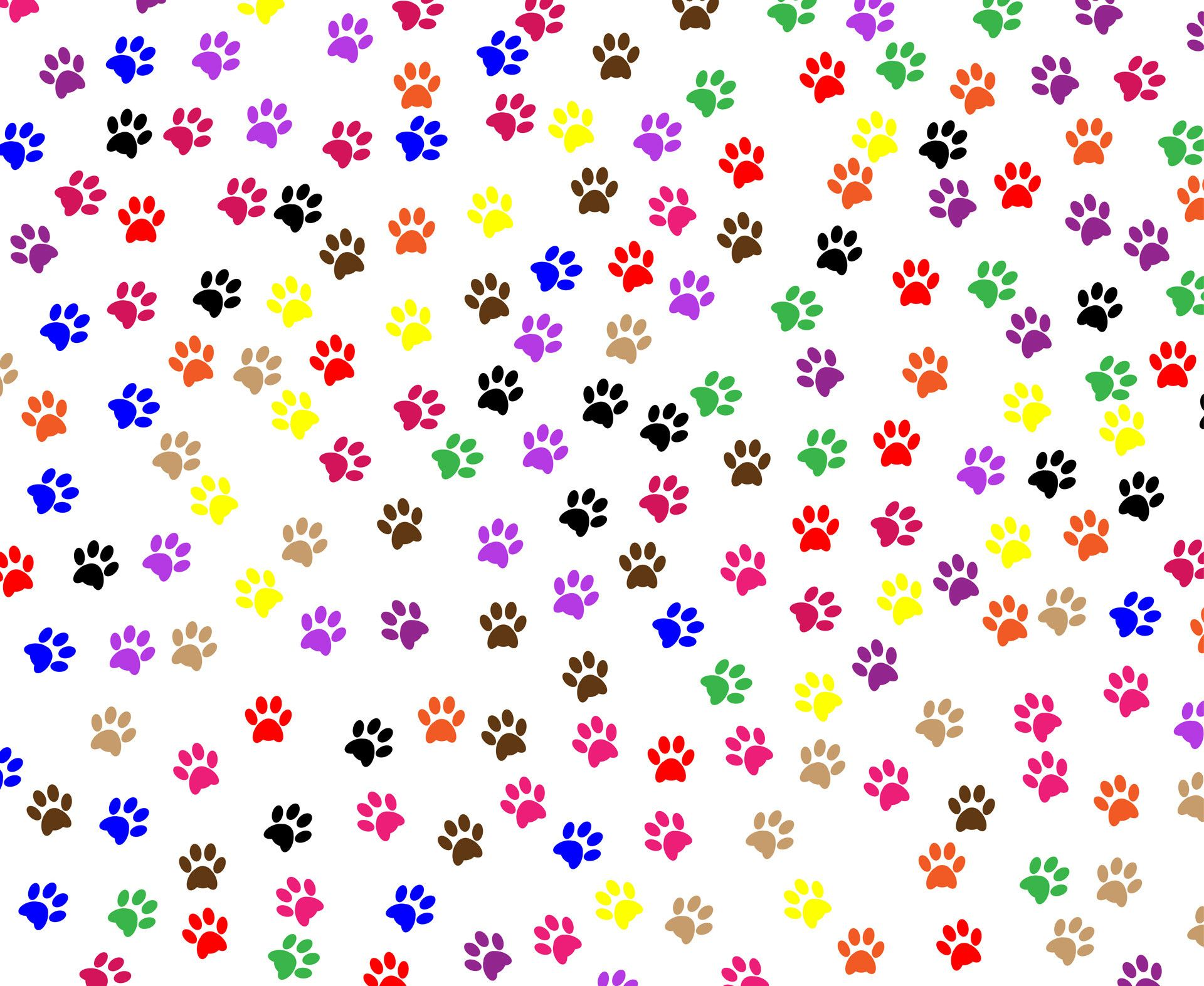 1920x1573 Dog Paws Wallpaper (41+ images)