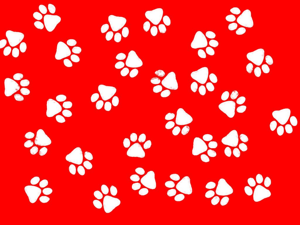 1024x768 Paw Print Wallpaper - Wallpapers Browse