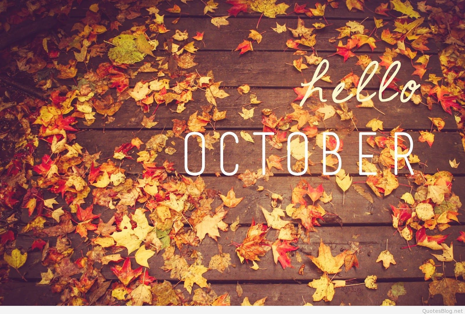 1600x1079 Hello October Images, Hello October Wallpapers