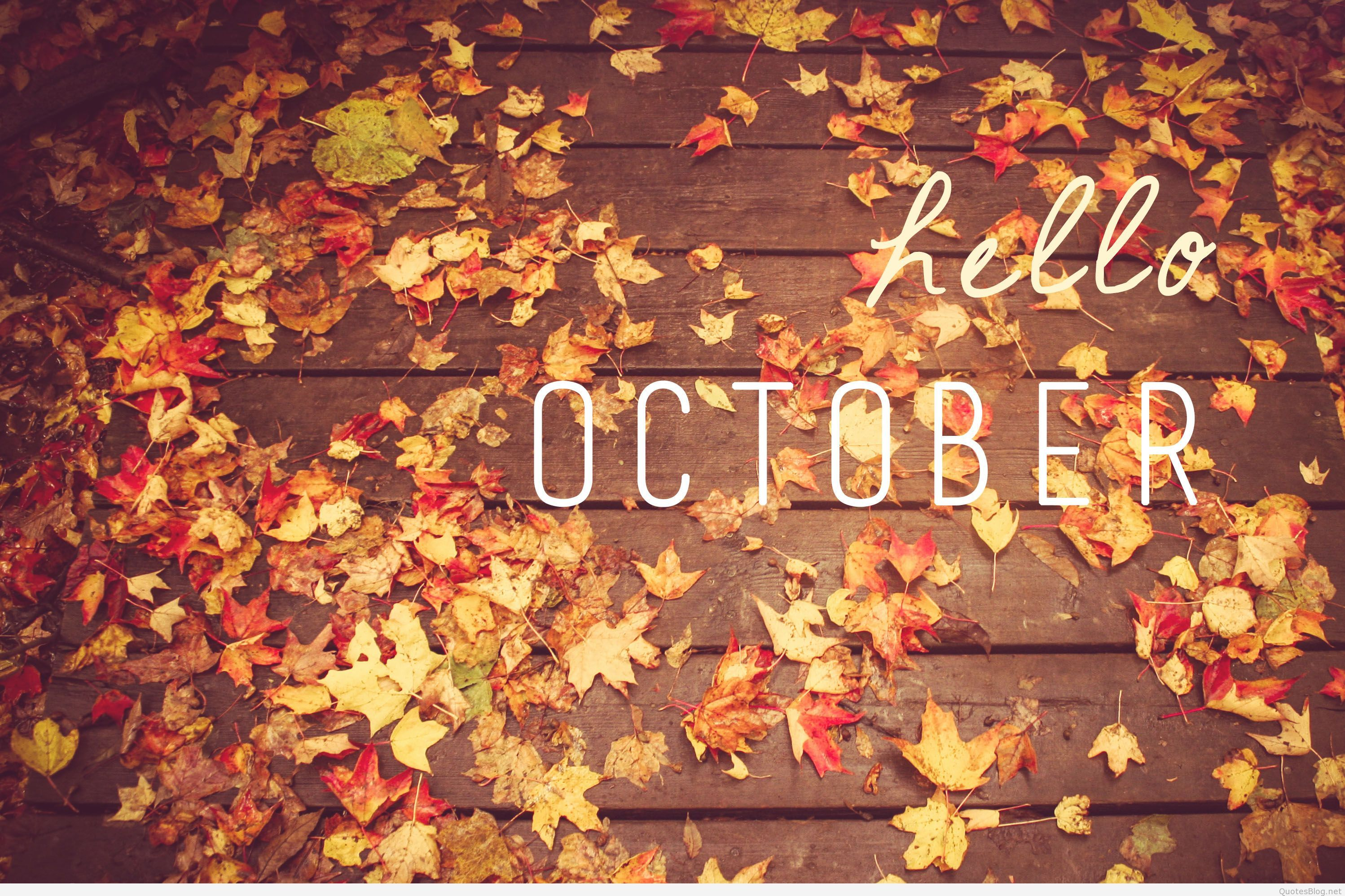 2996x1996 Hello October Quotes and Sayings on Tumblr | Welcome October ...