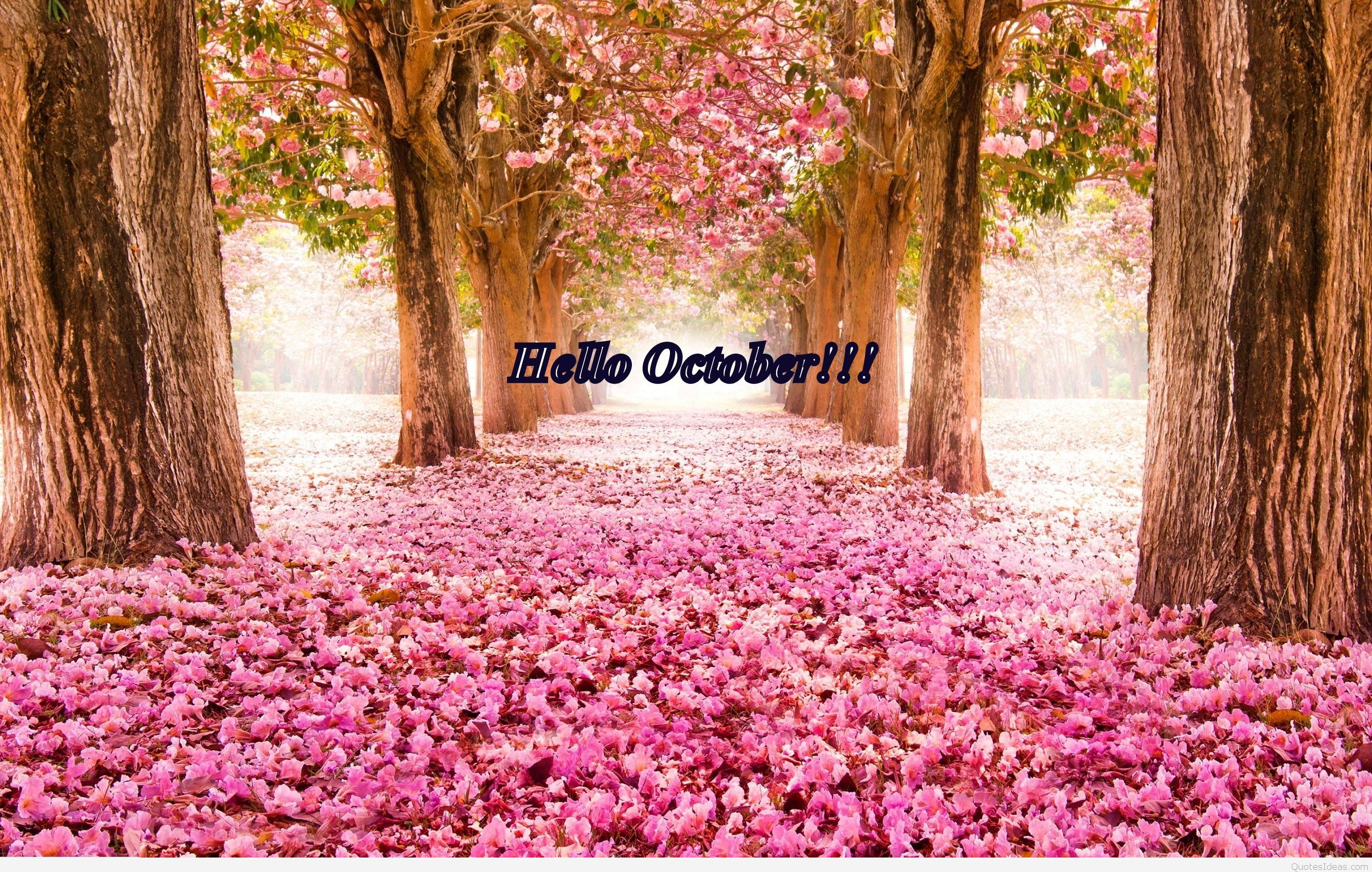 2560x1627 Hello October quote with wallpaper