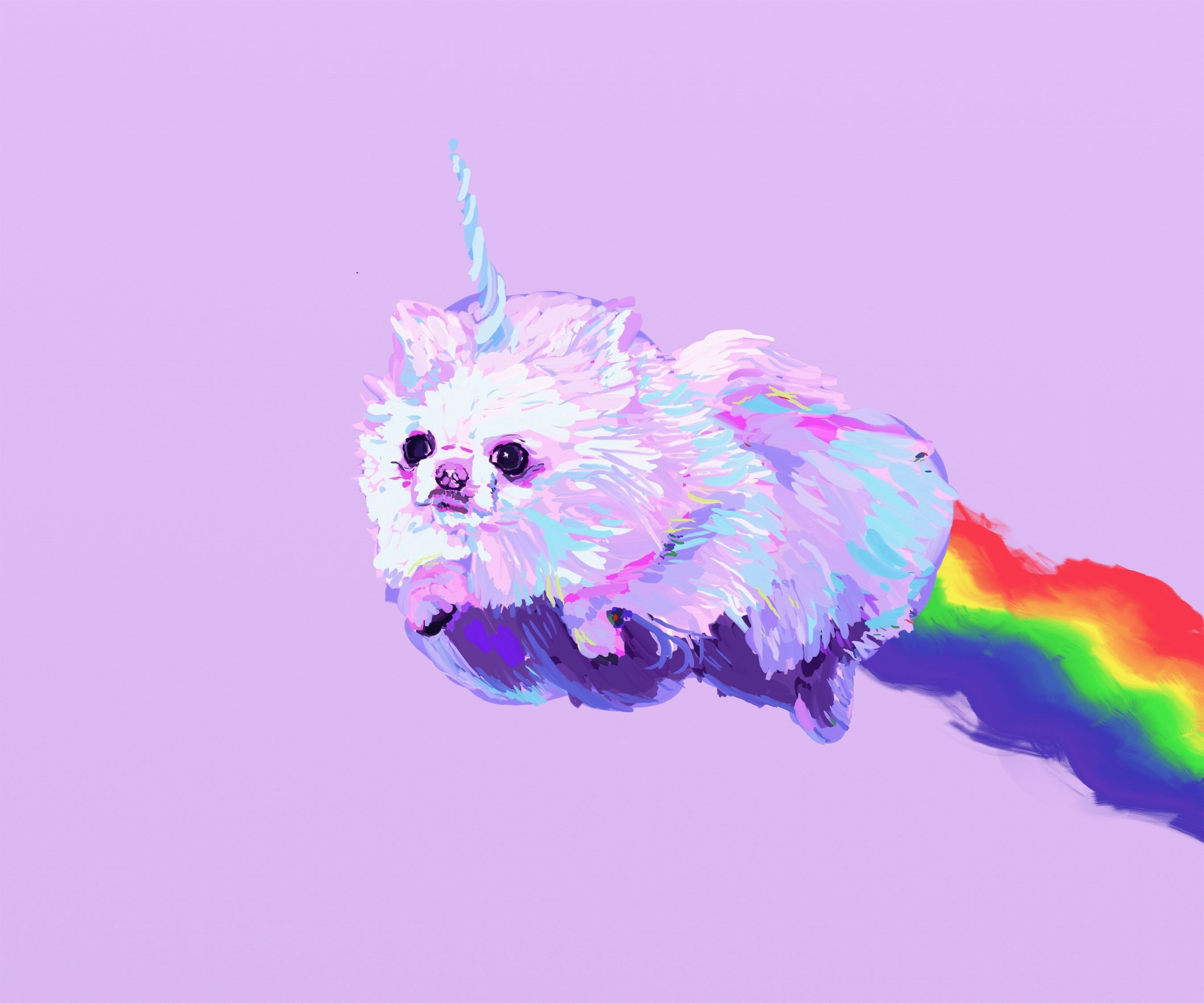 2700x2250 POMERANIAN dog dogs fantasy unicorn wallpaper | 2700x2250 | 520319 ...