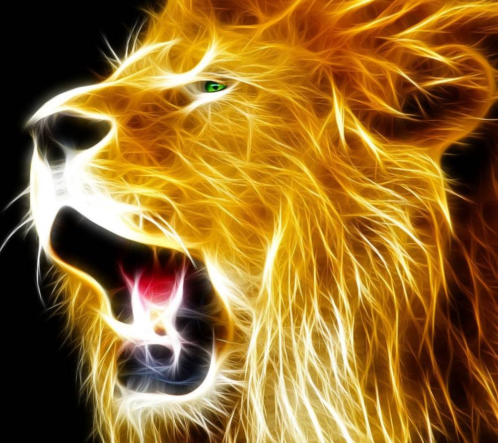 1003x892 Neon Lion Wallpaper by __pearl__ - 2a - Free on ZEDGE™