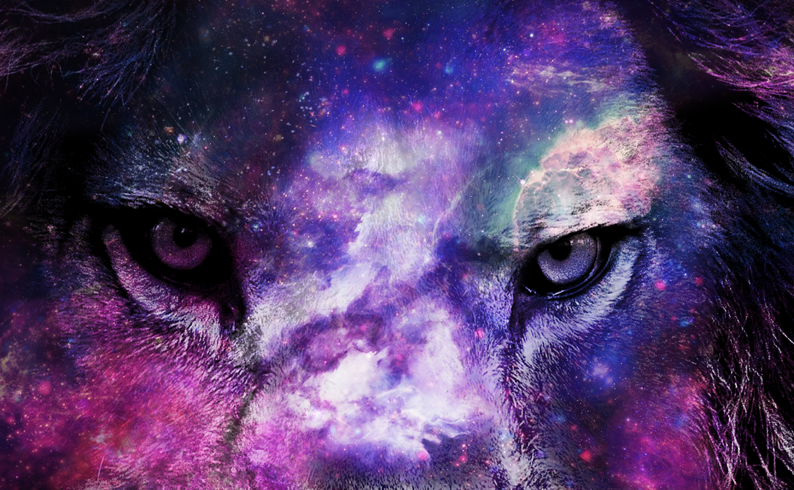 1137x702 Lion Galaxy Wallpaper (109+ images in Collection) Page 2