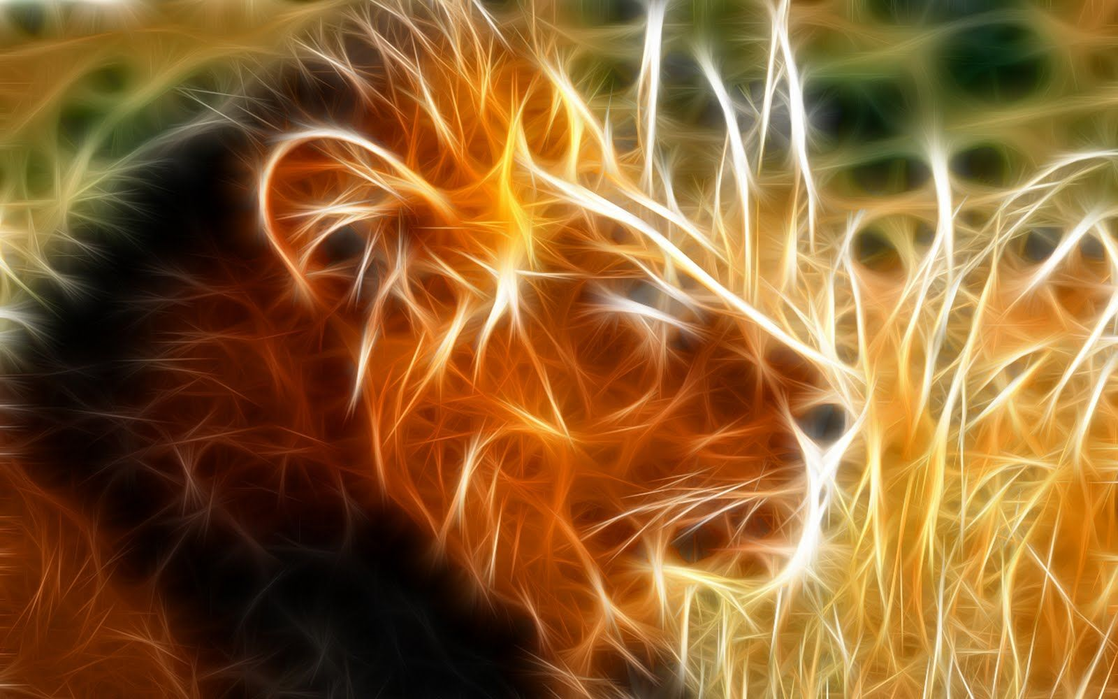 1600x1000 Lion Hd Wallpaper (50+ images) on Genchi.info