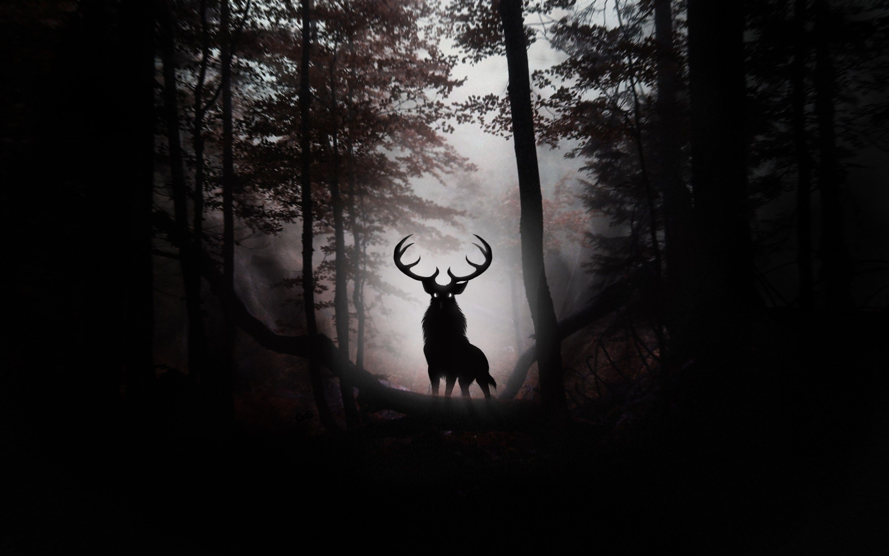 2880x1800 Big Deer Pics, GsFDcY WP Collection