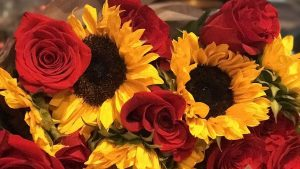 Sunflowers and Roses Wallpapers – Top Free Sunflowers and Roses Backgrounds