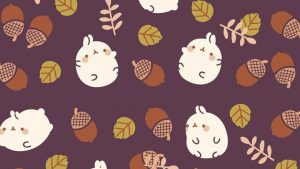 Cute Autumn Fall Wallpapers – Top Free Cute Autumn Fall Backgrounds