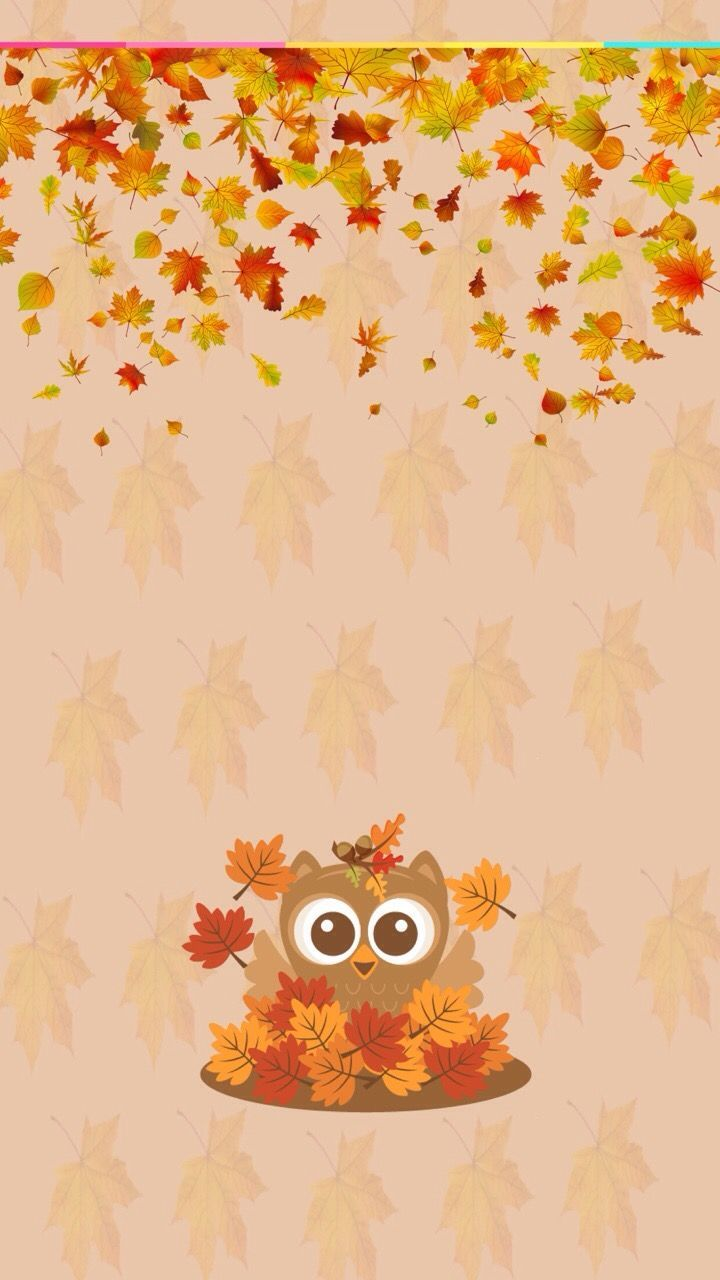 720x1280 Autumn | Fall