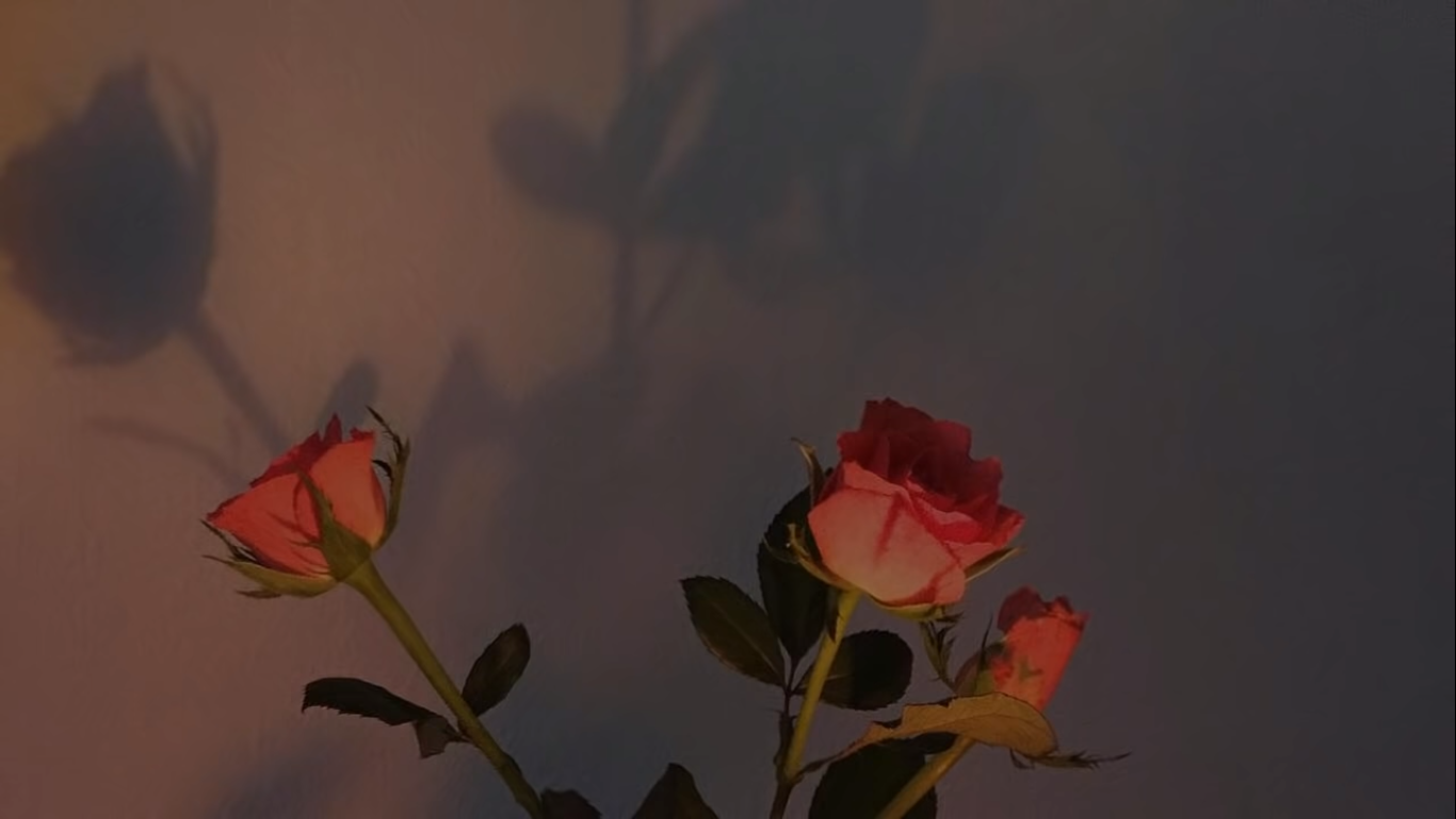 1366x768 for laptop // computer in 2020 | Rose wallpaper, Aesthetic ...