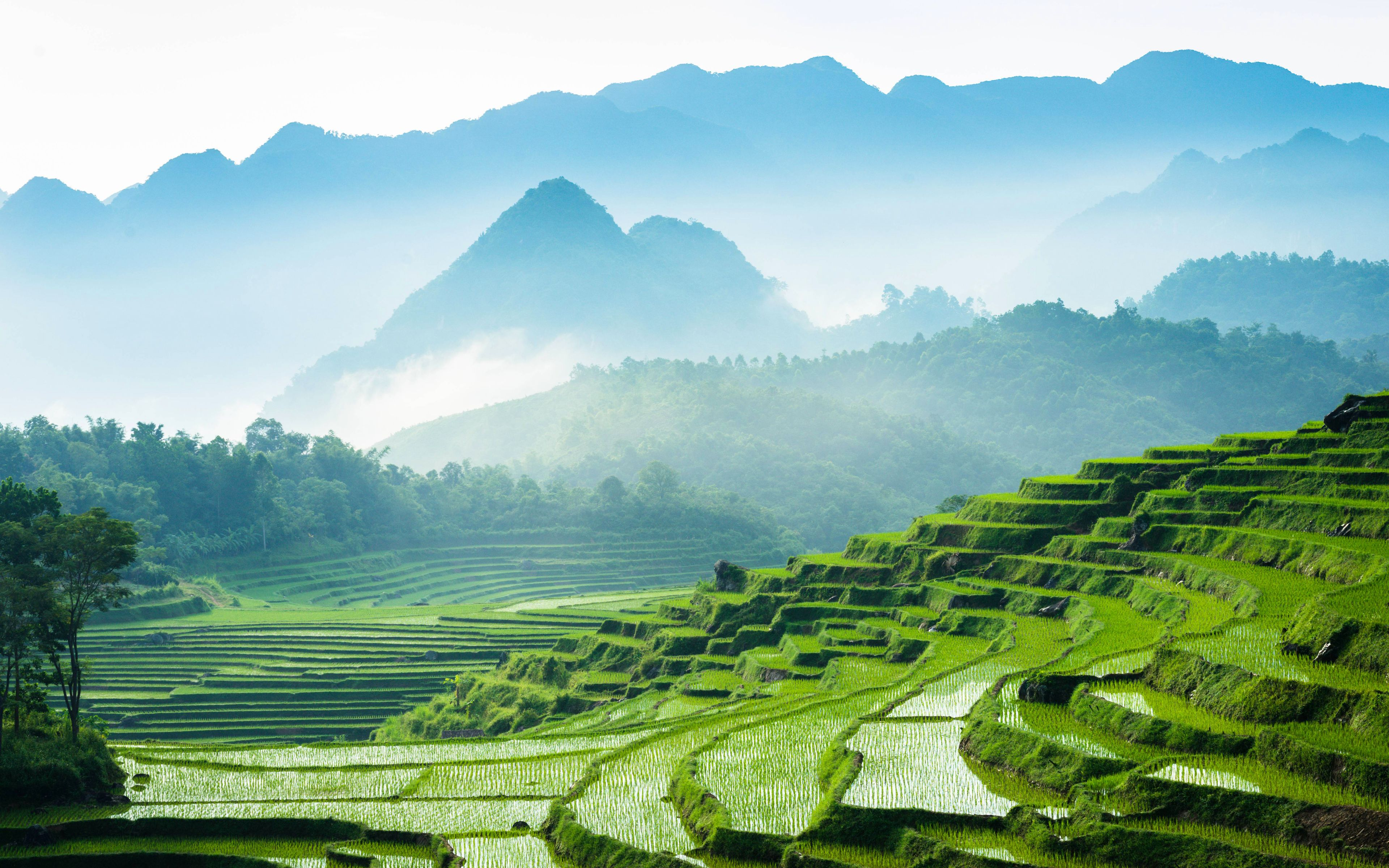 3840x2400 Download wallpapers Vietnam, 4k, rice fields, mountains ...
