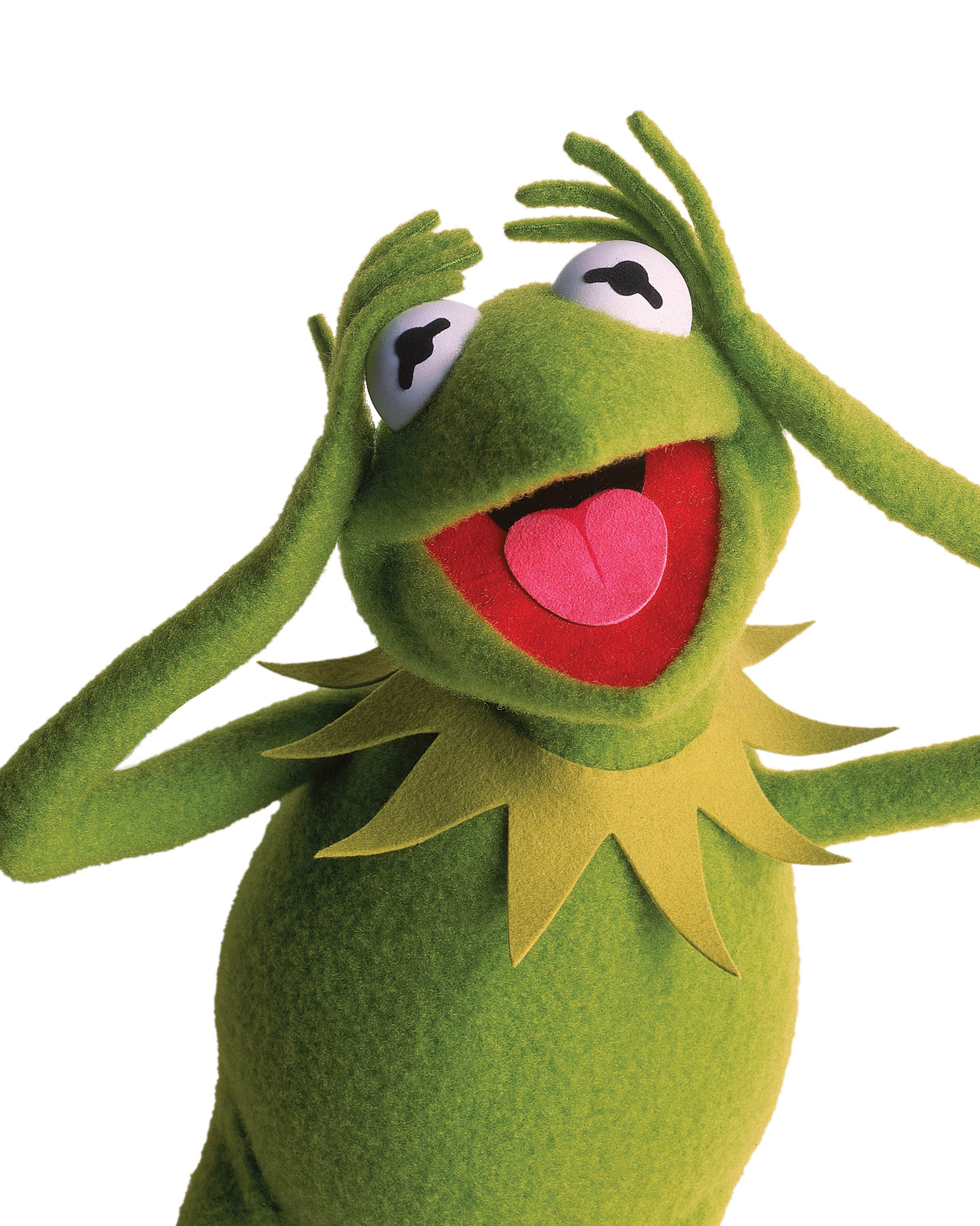 2400x3000 Kermit The Frog From The Muppets Wallpaper - Kermit The Frog ...