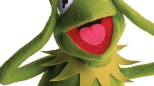 Kermit the Frog Phone Wallpapers – Top Free Kermit the Frog Phone Backgrounds