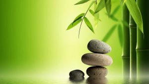 Zen Bamboo Wallpapers – Top Free Zen Bamboo Backgrounds