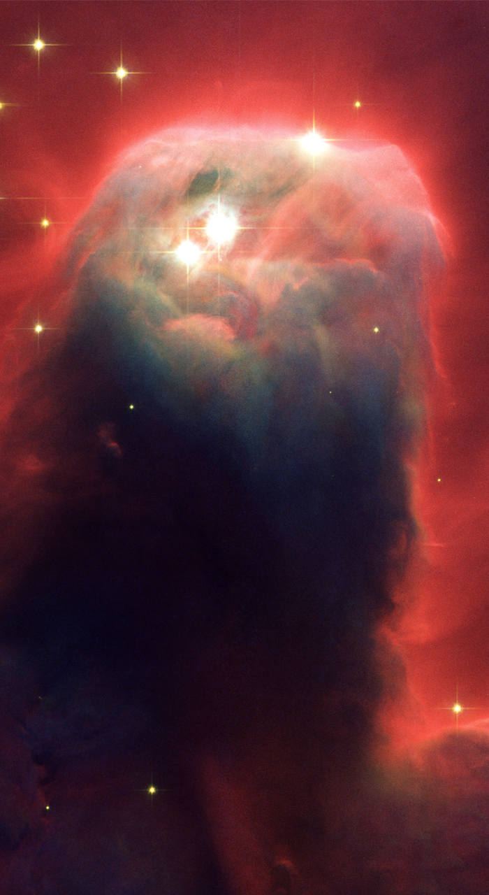 700x1280 35+ Hubble Phone Wallpapers Apes In Space