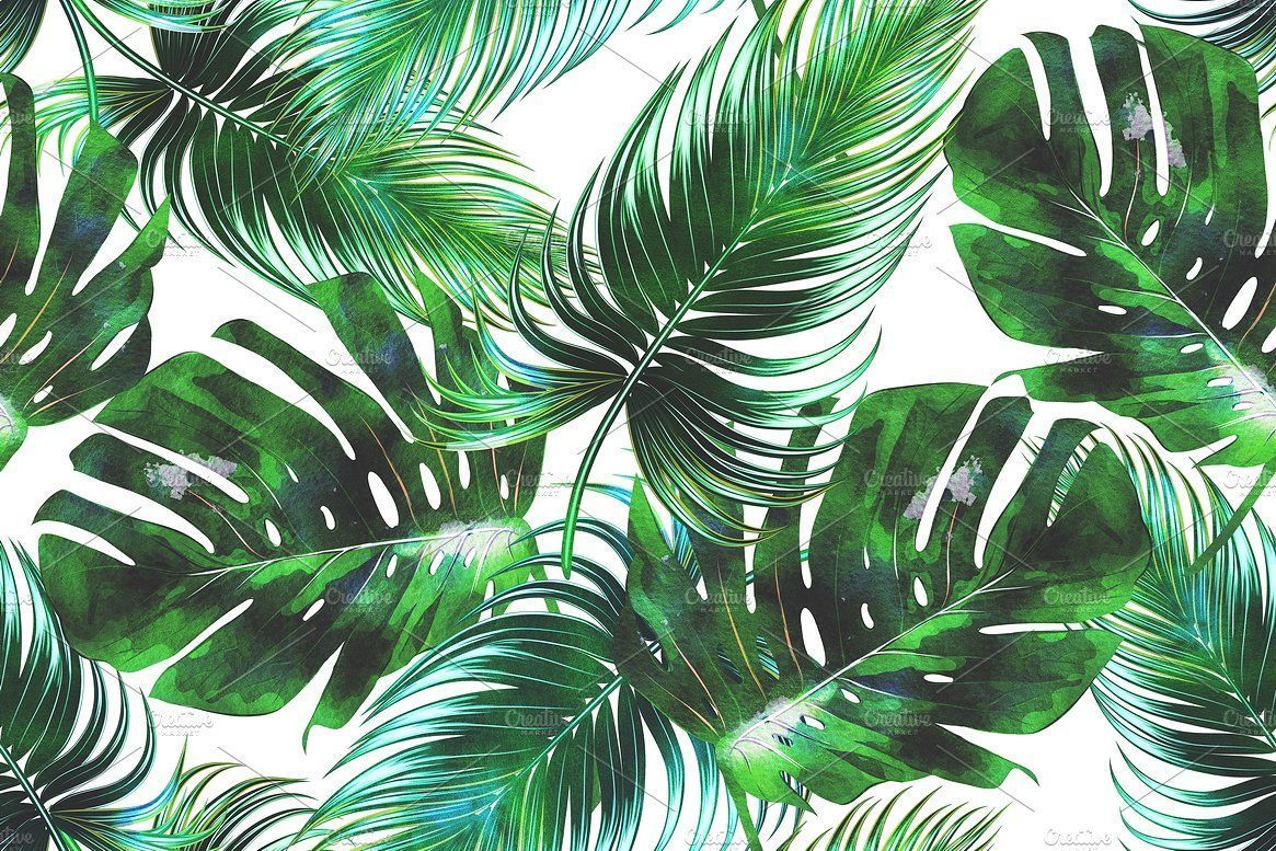 1165x777 15+ Watercolor Tropical Leaf Wallpapers - Download at ...