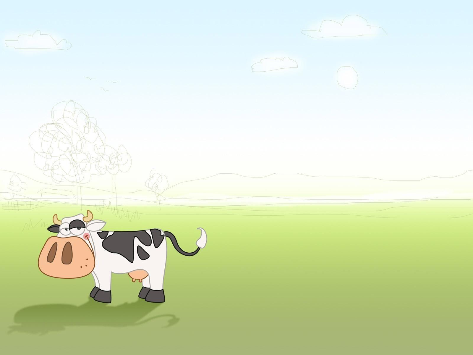 1600x1200 Cute Cow Wallpapers