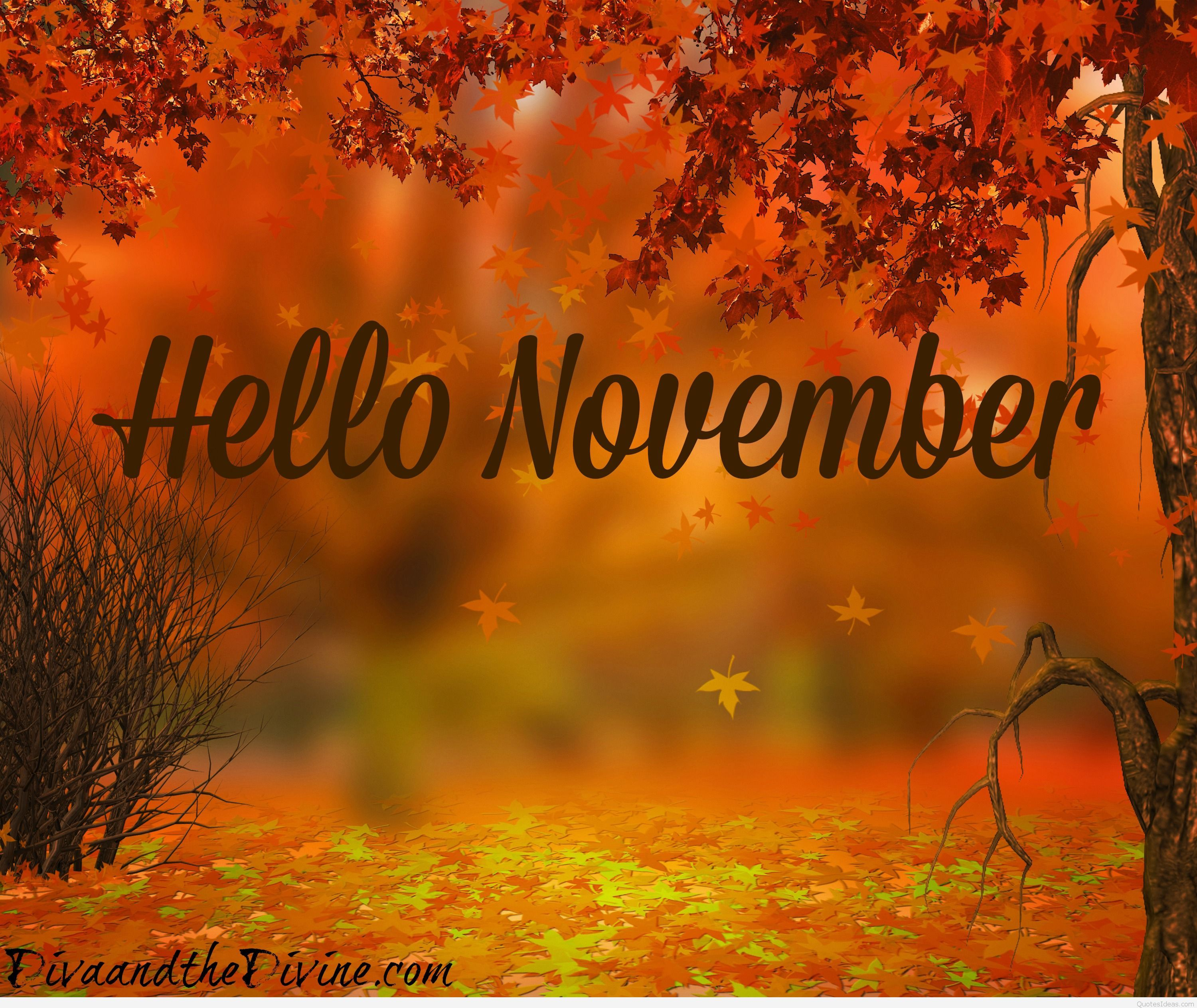 3000x2527 Hello November quotes, pictures and wallpapers