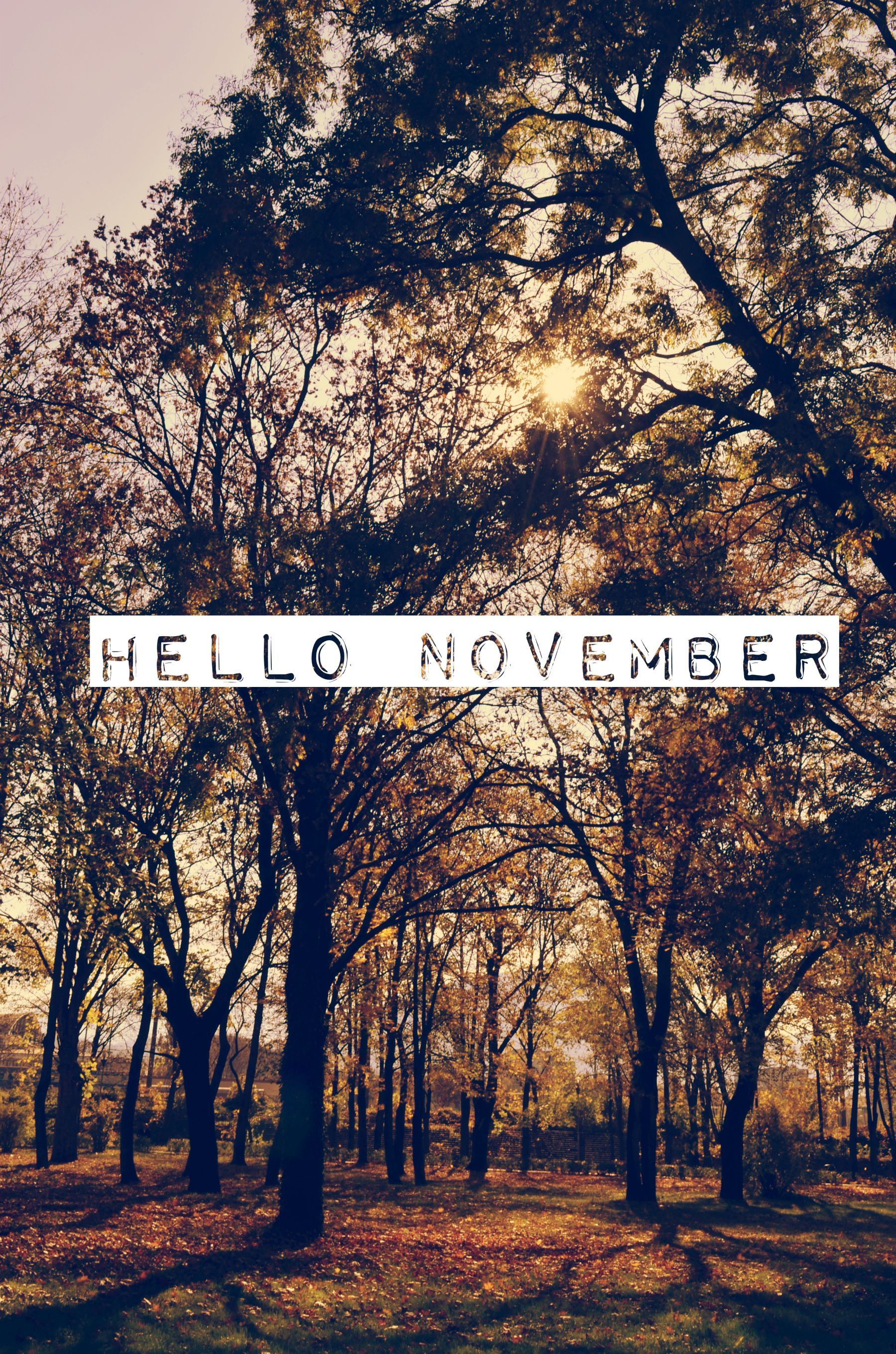 1800x2718 Hello November!! | Photography | November wallpaper ...