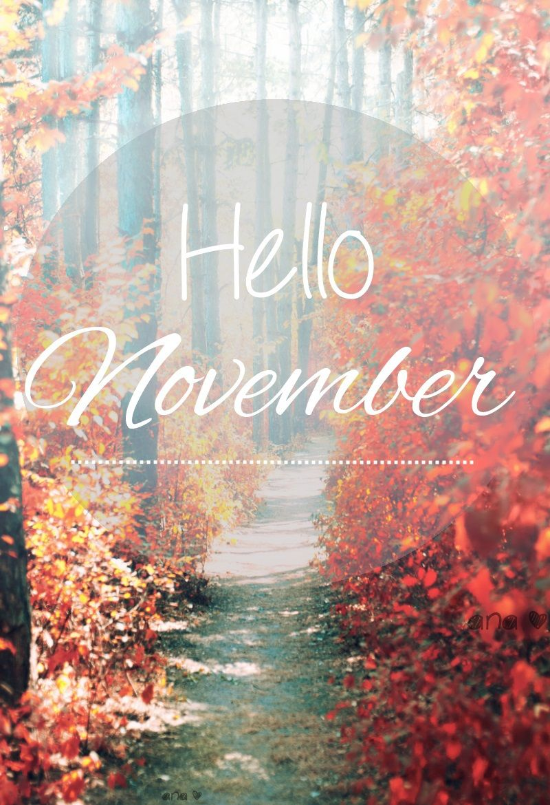 800x1170 hello november...second favorite month