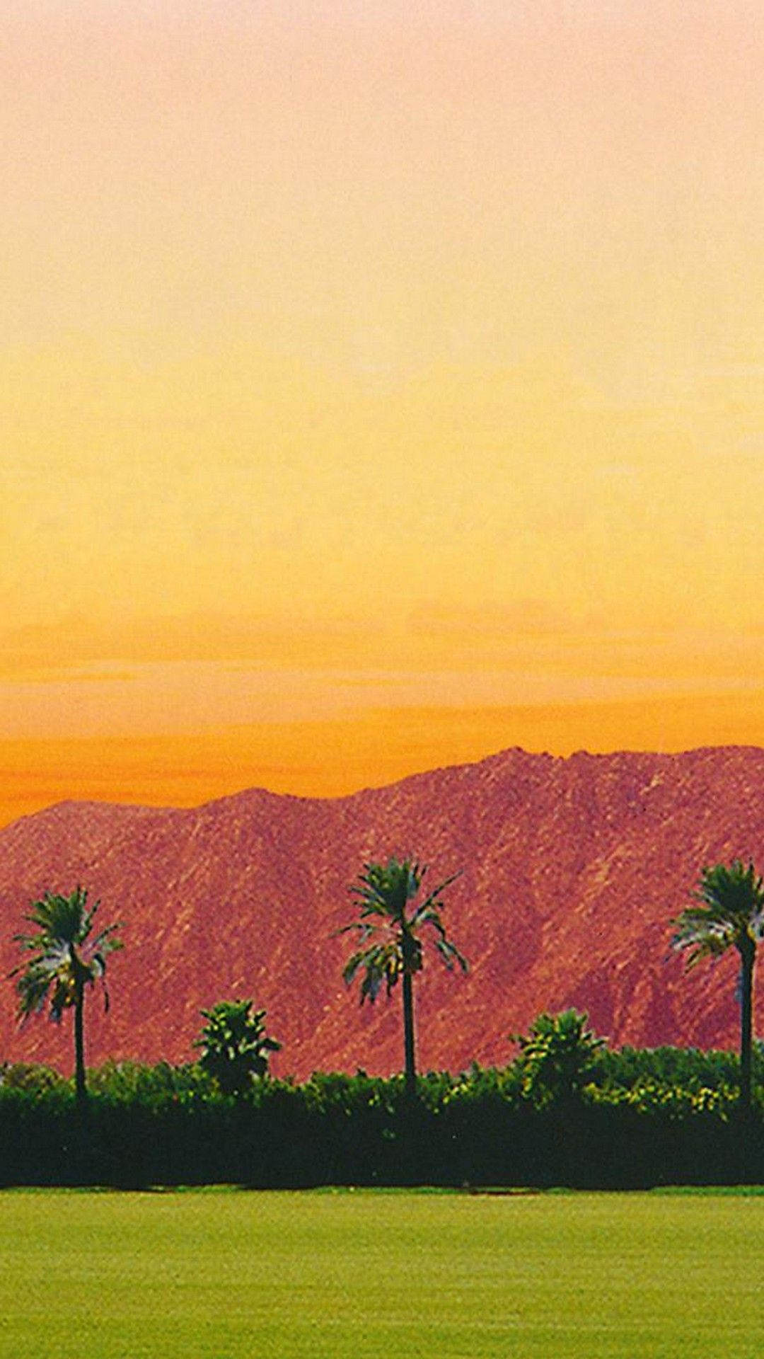1080x1920 Coachella 2019 Wallpaper For Android - 2019 Android Wallpapers