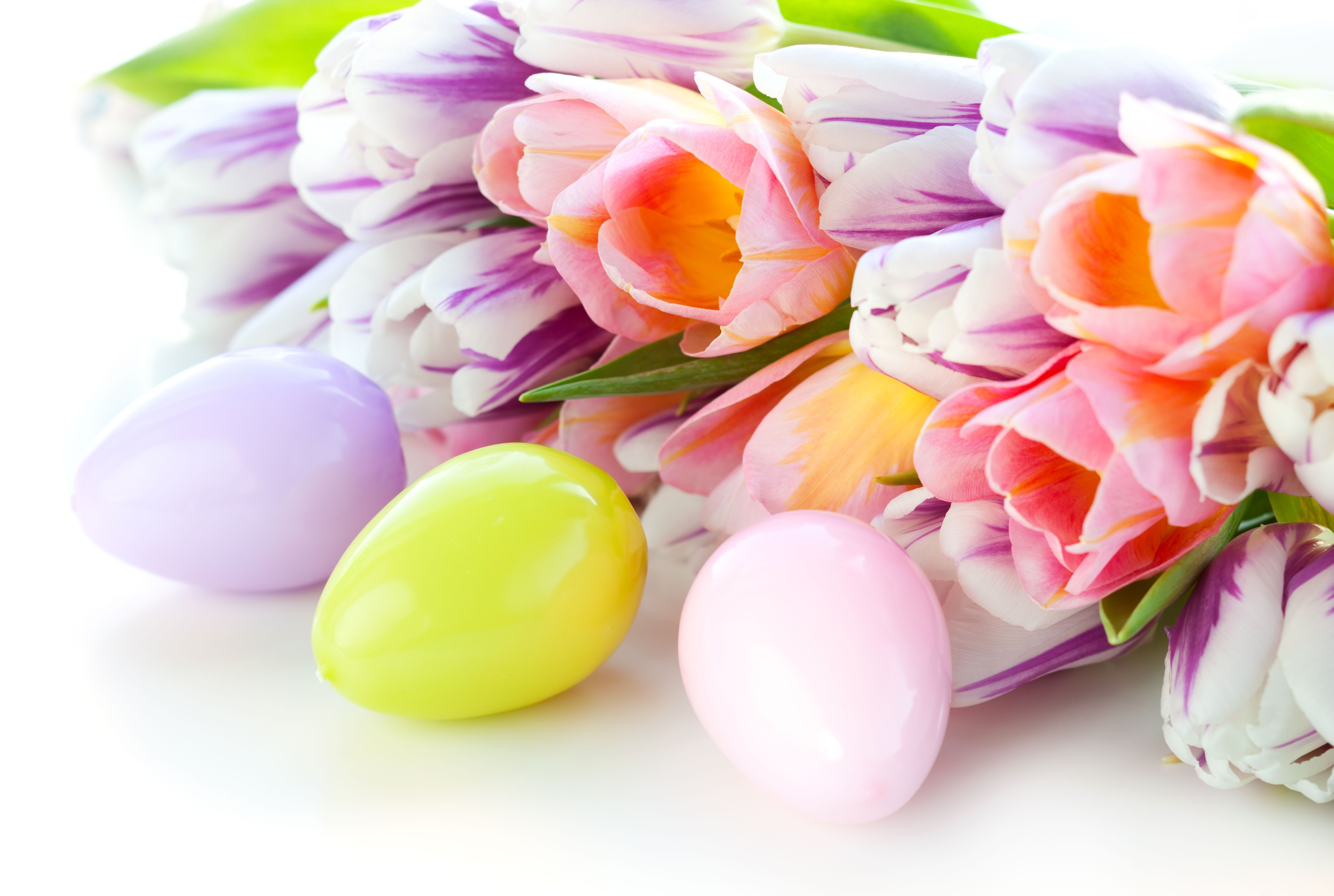5288x3552 55+ Easter Flowers Wallpapers - Download at WallpaperBro