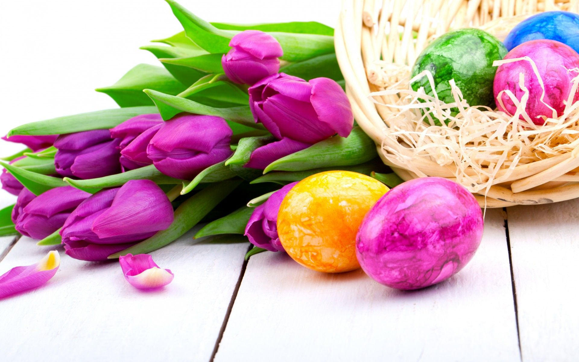 1920x1200 Tulips purple flowers spring holiday Easter eggs wallpaper ...