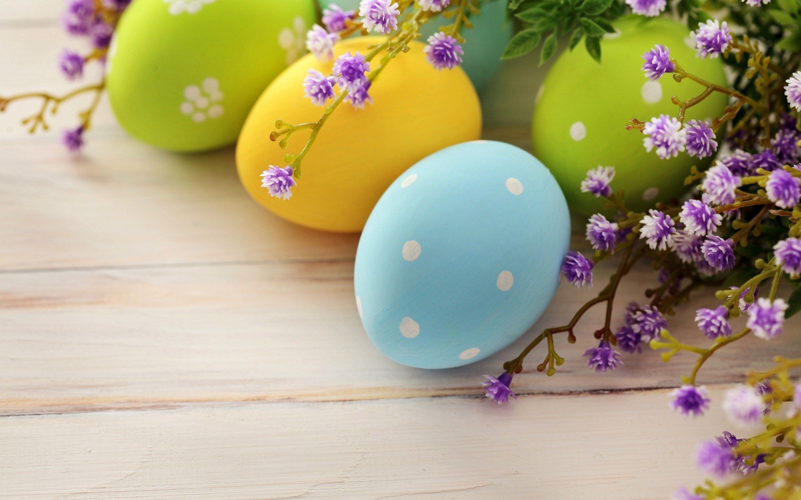 2560x1600 62+ Easter Spring Wallpapers on WallpaperPlay
