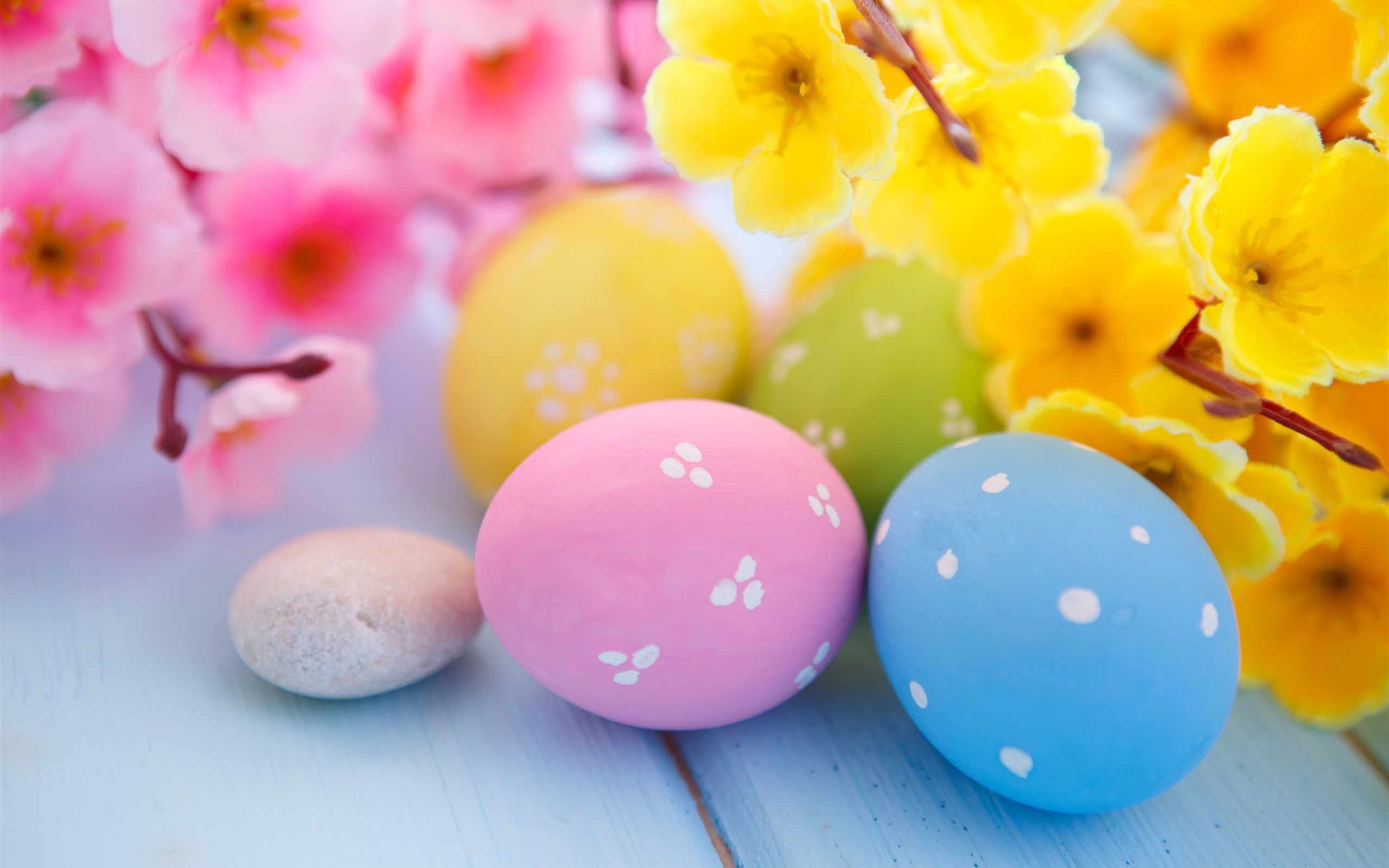 2560x1600 Easter Eggs and Spring Blossoms, HD Celebrations, 4k ...