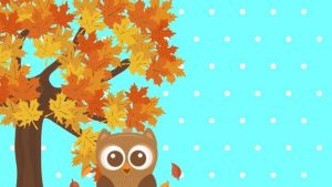 Cute Fall Owl Wallpapers – Top Free Cute Fall Owl Backgrounds