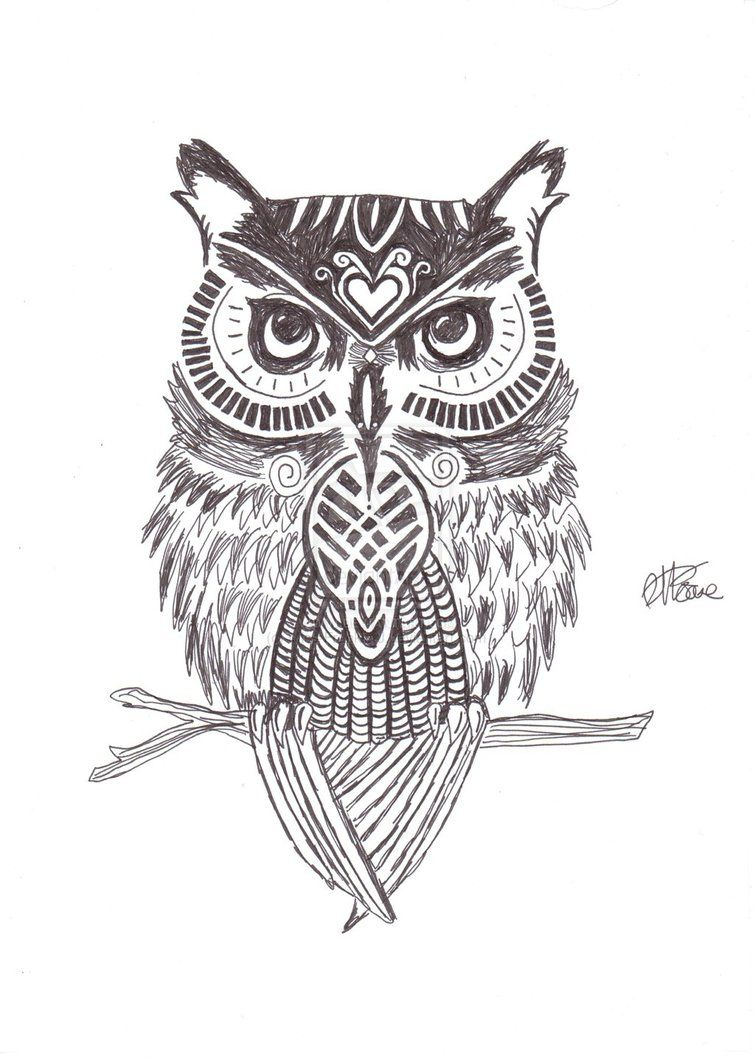 755x1058 Owl Tattoo Drawing at PaintingValley.com | Explore ...