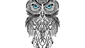 Cute Owl Tattoo Wallpapers – Top Free Cute Owl Tattoo Backgrounds