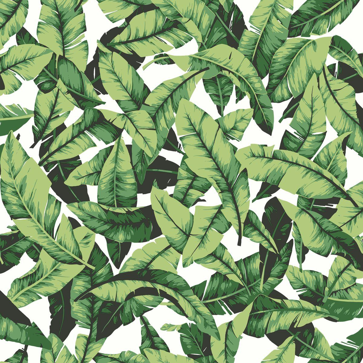 1200x1200 RoomMates Tropical Palm Leaf Peel and Stick Wallpaper, 20.5