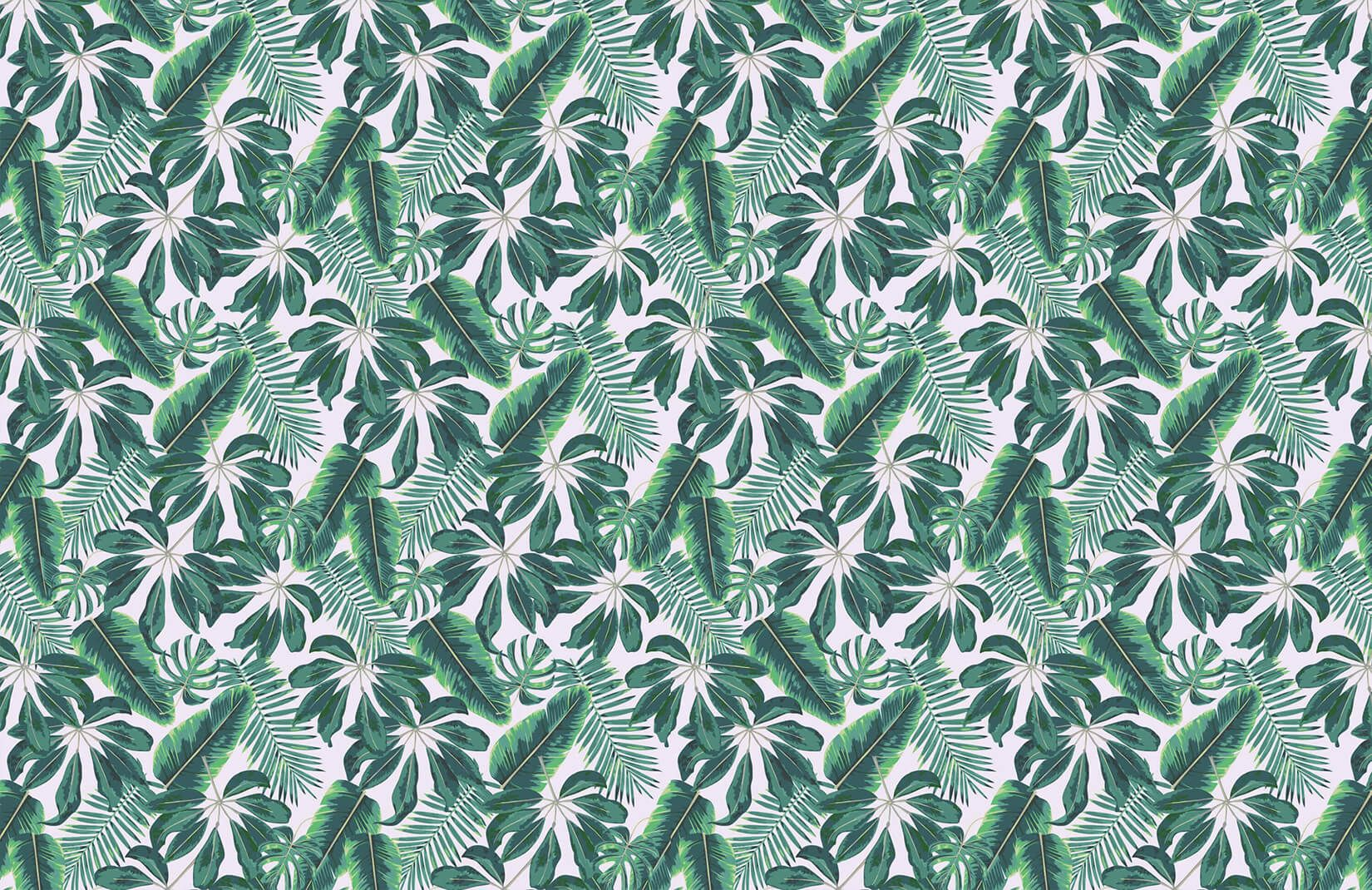 1650x1070 Mixed Tropical Leaves Wallpaper | Cool Tropical Leaf ...
