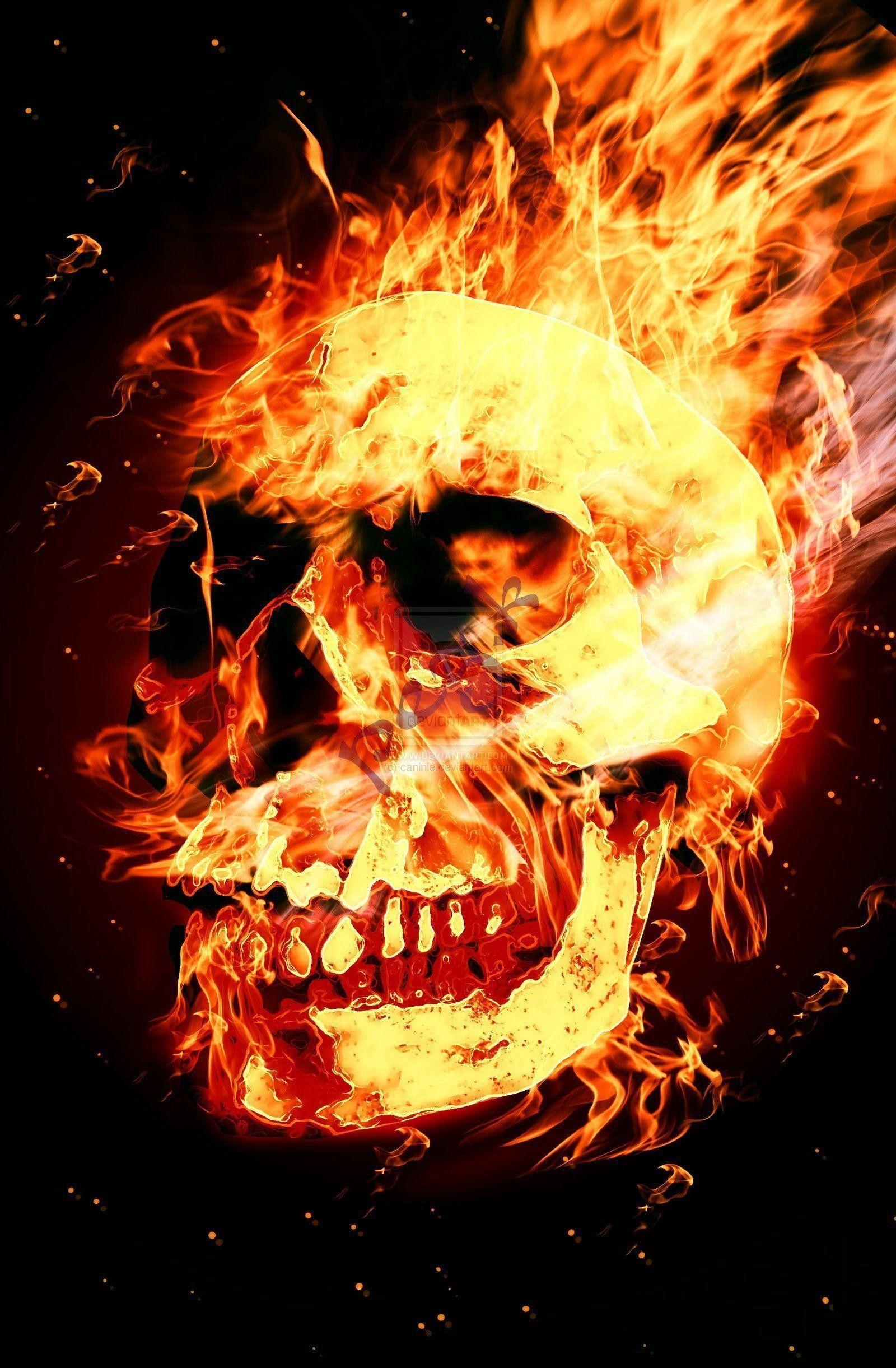 1600x2442 57+ Skull Fire Wallpapers on WallpaperPlay
