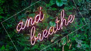 Green Aesthetic Tumblr Computer Wallpapers – Top Free Green Aesthetic Tumblr Computer Backgrounds