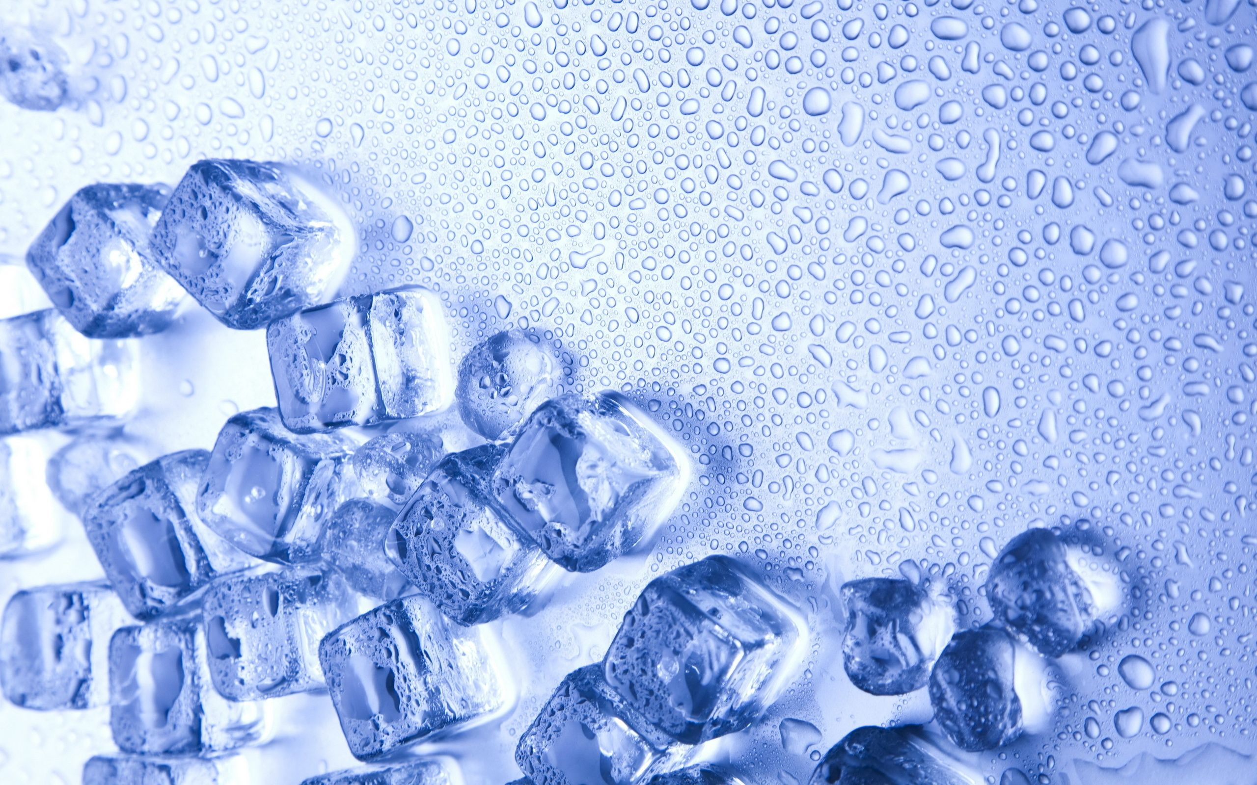 2560x1600 Hd Ice Wallpapers - Ice Cold (#630373) - HD Wallpaper Download