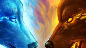 Fire and Ice Wolf Wallpapers – Top Free Fire and Ice Wolf Backgrounds