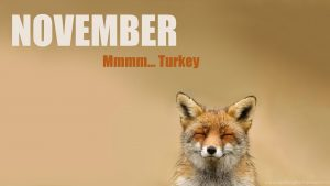 Funny November Wallpapers – Top Free Funny November Backgrounds