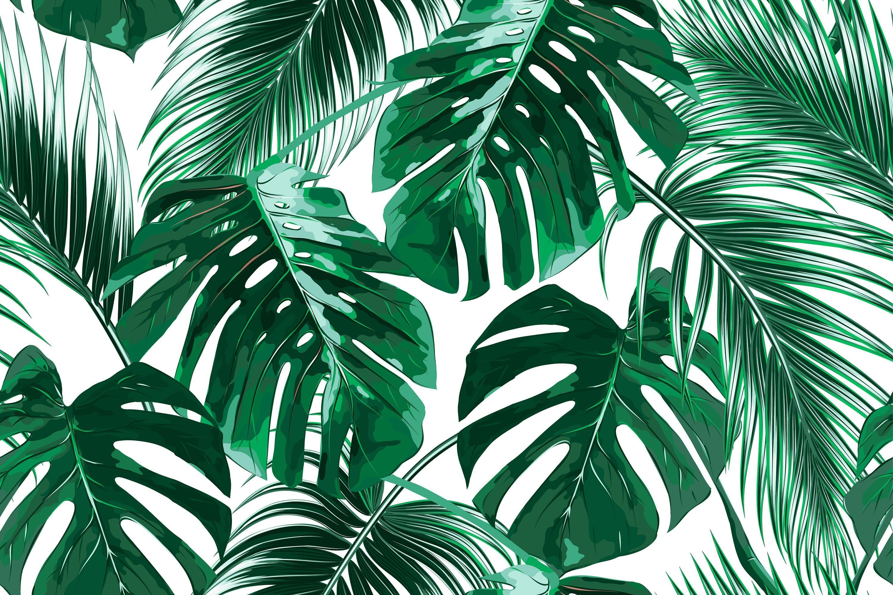 3000x1999 Removable Wallpaper Mural Peel & Stick Tropical Palm Leaves