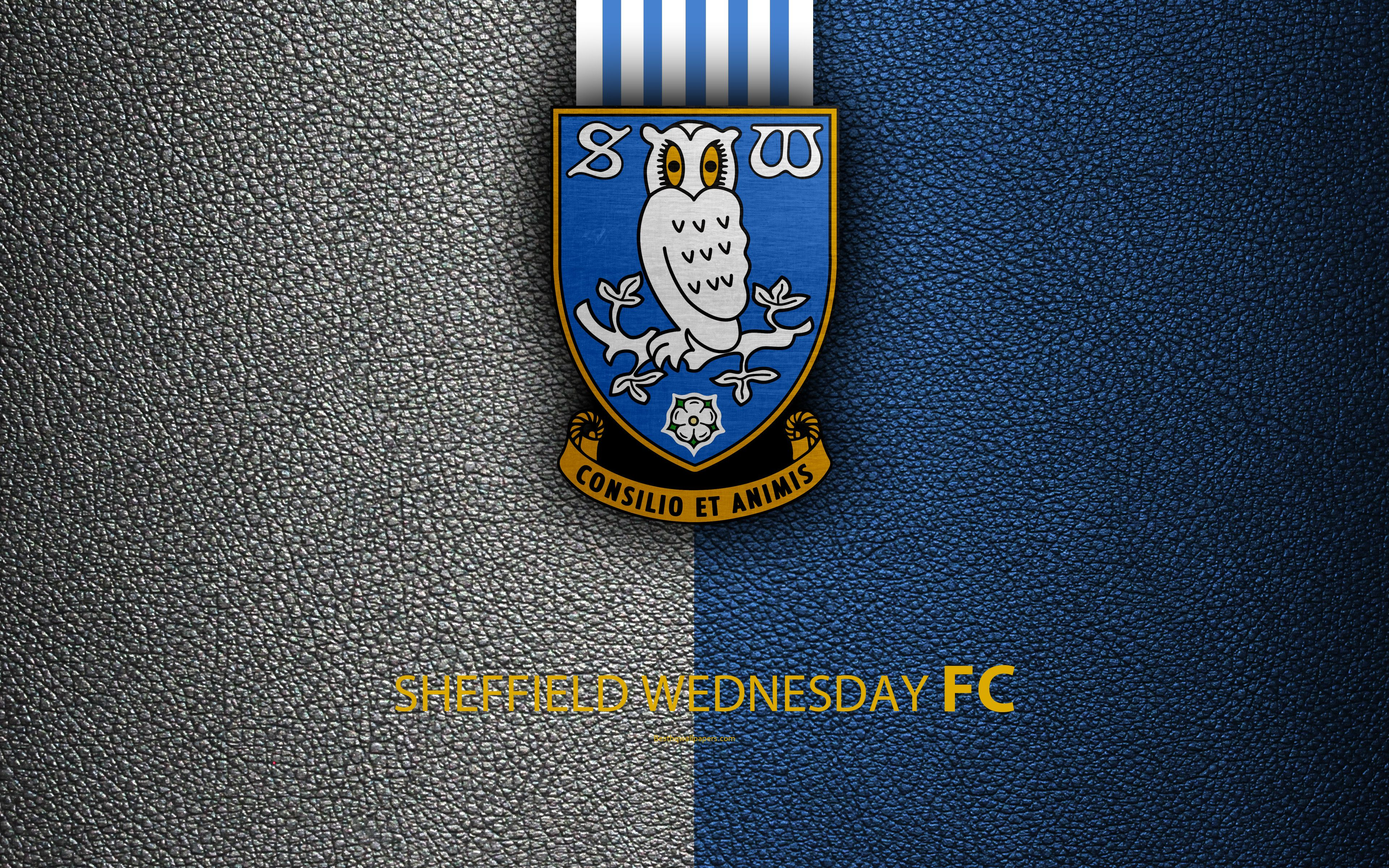 3840x2400 Download wallpapers Sheffield Wednesday FC, 4K, English ...