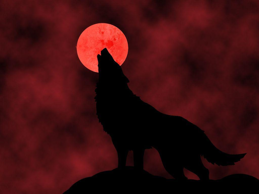 1024x768 Blood Moon Wallpapers