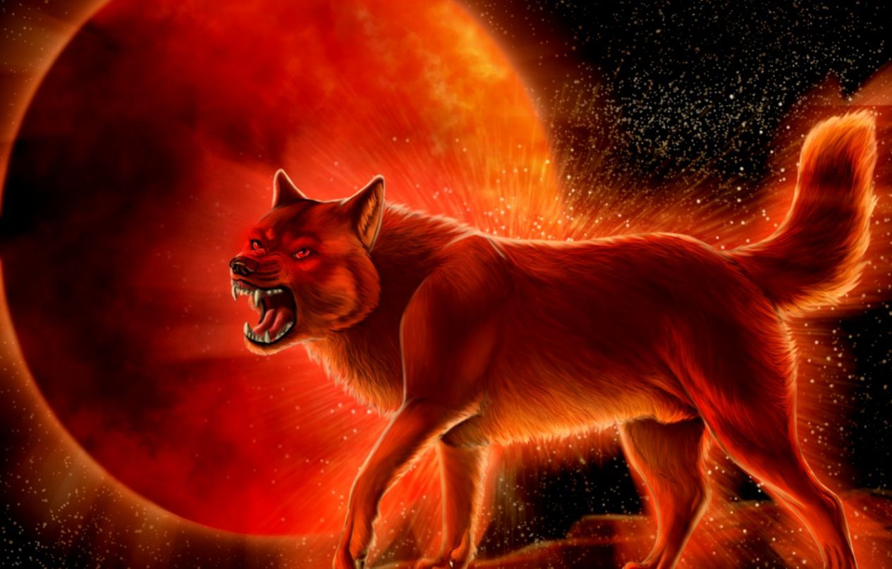 1265x807 Red Moon Wolf Wallpaper | The Great Wallpapers