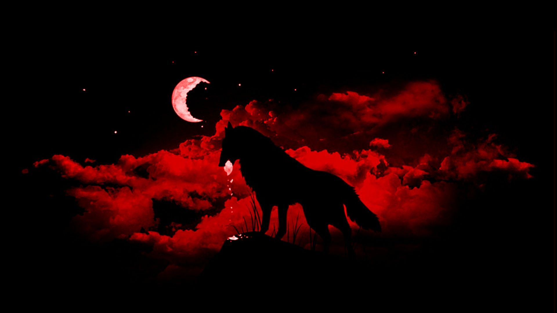 1920x1080 Red Wolf Wallpapers