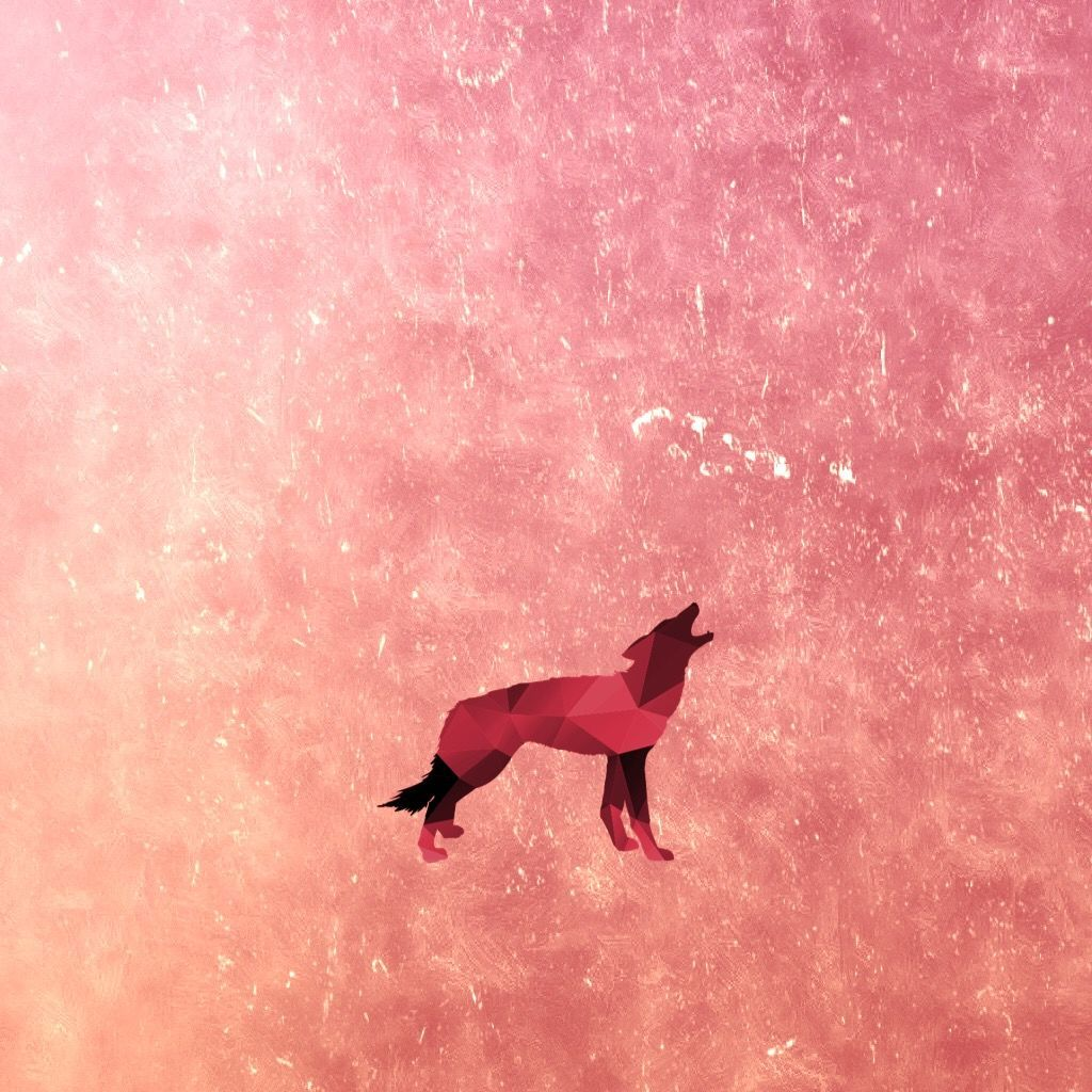 1024x1024 Red Wolf Shape on rose gold background